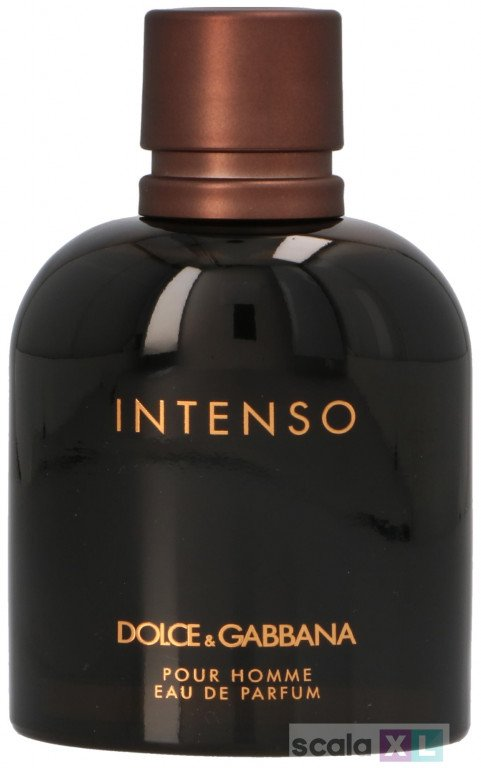 D&G Intenso Pour Homme Edp Spray
